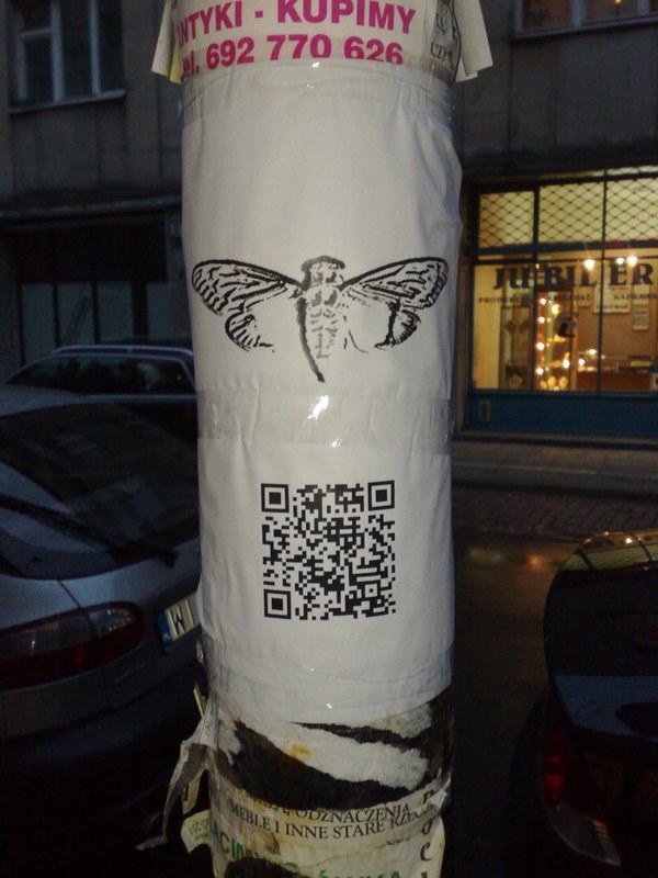 Plakat tajemniczej organizacji Cicada 3301 w Warszawie /materiały prasowe