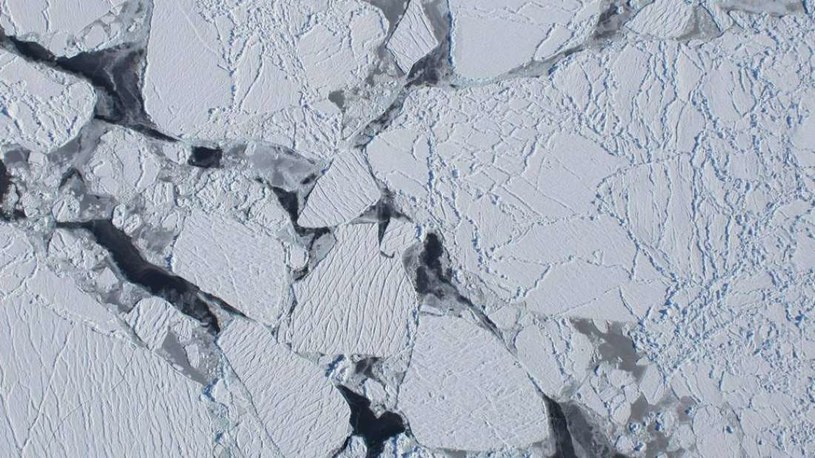 Plama gorąca doprowadziła do topnienia lodu Antarktydy /materiały prasowe