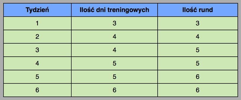 Plan treningowy /INTERIA.PL