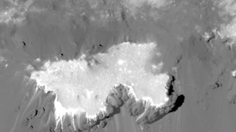 Planetoida Ceres w ujęciu sondy Dawn /NASA