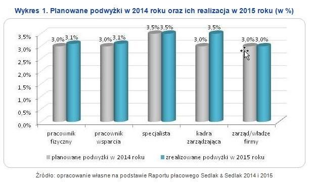 Planowane podwyżki są w przyszłym roku /wynagrodzenia.pl