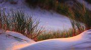 Planujesz urlop nad morzem? Oto powody, dla których powinnaś wybrać Bałtyk jesienią