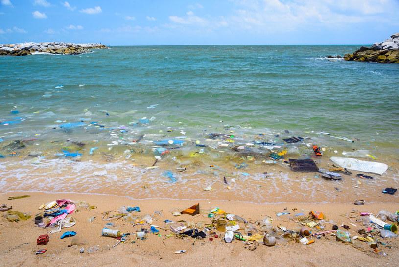 Plastik w przyrodzie /©123RF/PICSEL