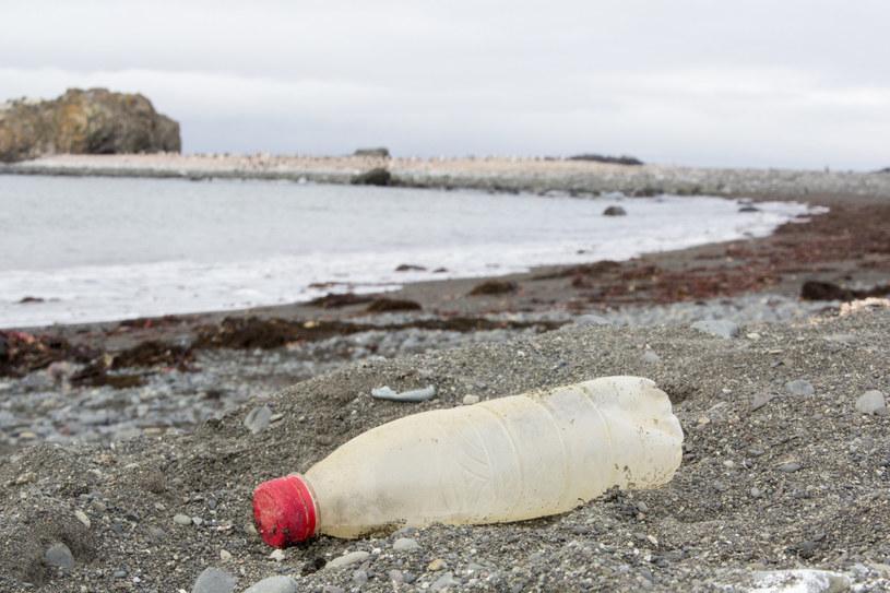 Plastikowa butelka wyrzucona przez ocean /ASHLEY COOPER/Science Photo Library/East News /East News