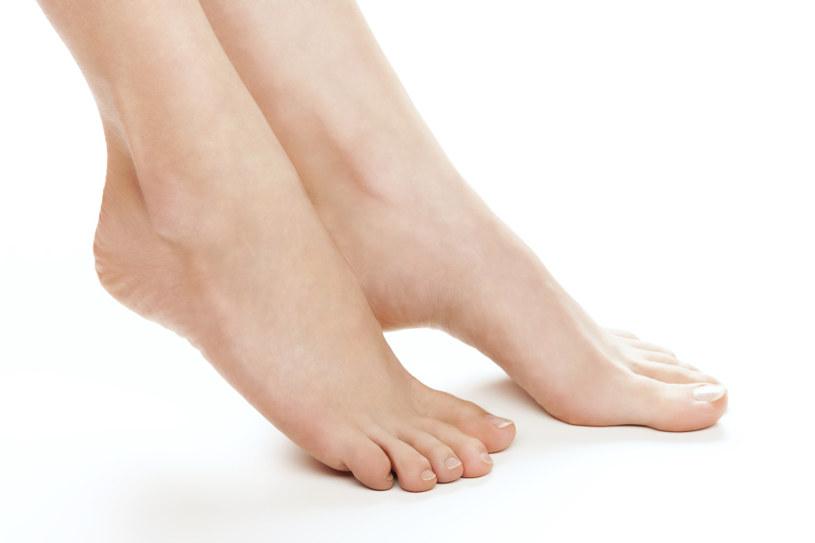 plastry na stopy /© Photogenica