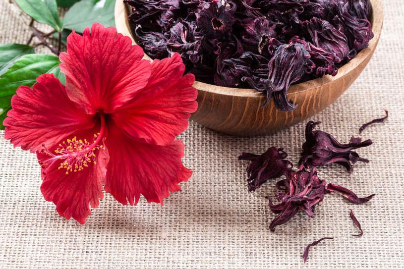 Płatki hibiskusa to prawdziwa skarbnica przeciwutleniaczy /123RF/PICSEL