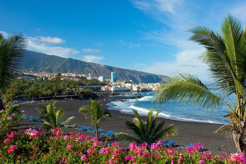 Playa Jardin, Puerto de la Cruz, Teneryfa, Hiszpania /Anastasy Yarmolovich  /©123RF/PICSEL