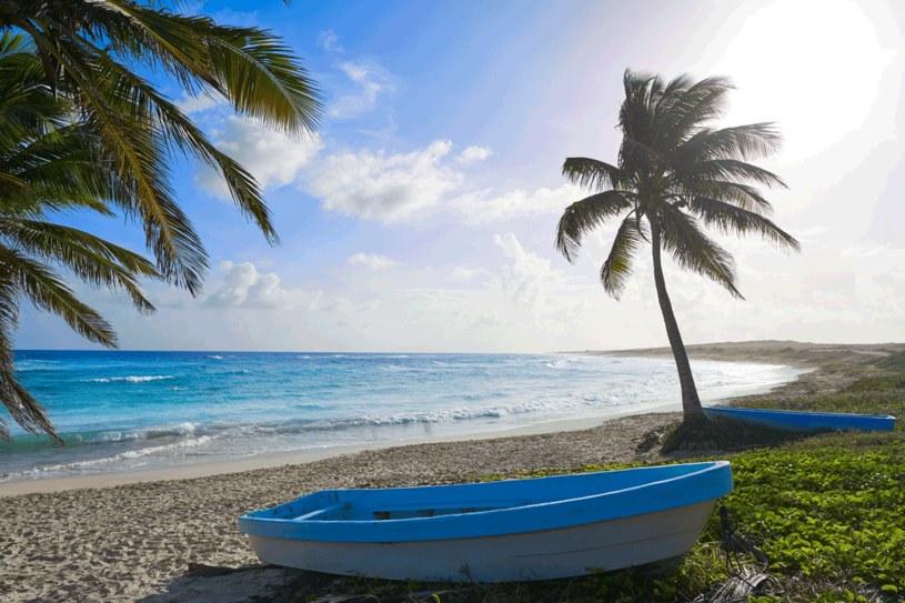 Plaża Chen Rio na Cozumel /123RF/PICSEL