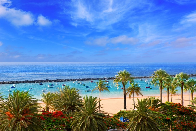Plaża Las Teresitas /©123RF/PICSEL