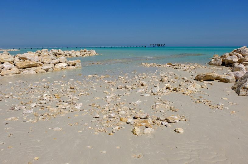 Plaża na północy Kataru /123RF/PICSEL