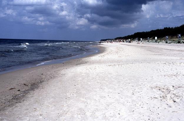 Plaża w Pogorzelicy/ fot. Marian Sadkowski /Reporter