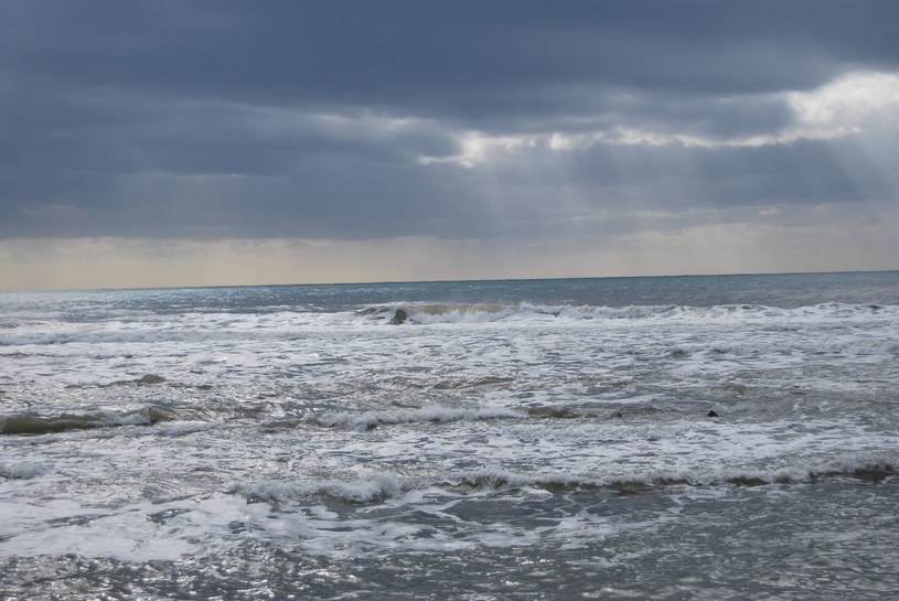 Plaża w Santa Severa, Włochy /123RF/PICSEL
