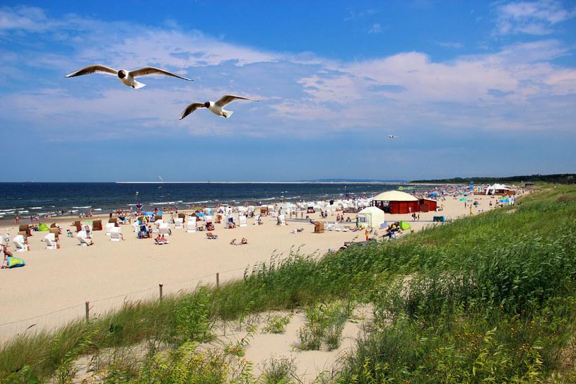 Plaża /123RF/PICSEL
