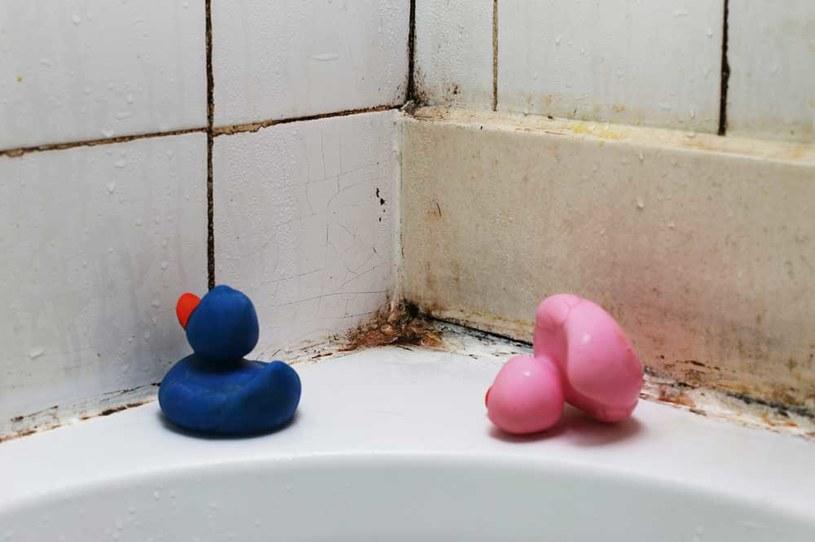 plesn w łazience /© Photogenica