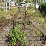 PLK ma 443 km linii do likwidacji. Ministerstwo nie da zgody