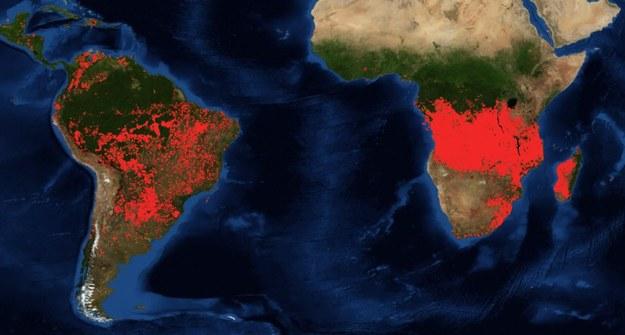 Płoną lasy Południowej Afryki /NASA /