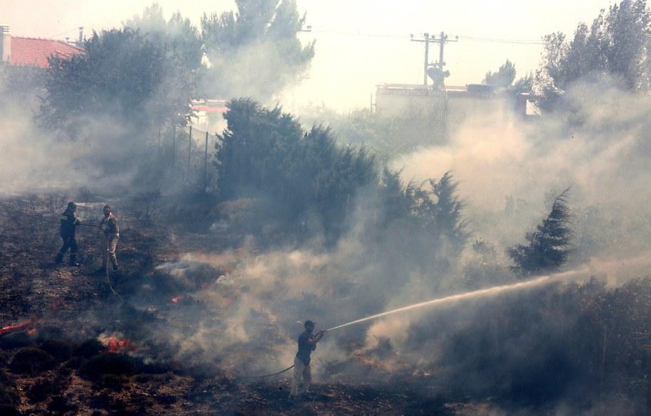 Płoną lasy w okolicach Aten /SIMELA PANTZARTZI  /PAP/EPA