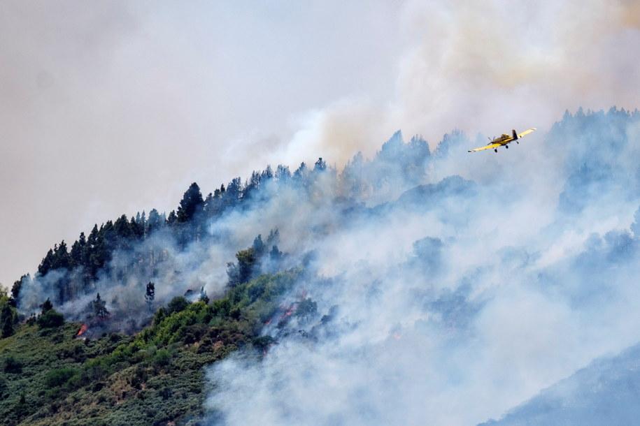 Płonące lasy na Gran Canarii /ANGEL MEDINA G.   /PAP/EPA