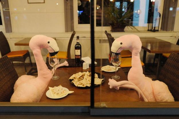 Pluszaki zamiast gości w jednej z warszawskich restauracji /Mateusz Marek /PAP