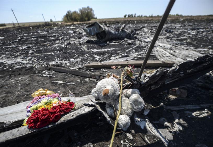 Pluszowy miś na miejscu katastrofy Boeinga 777, 28 lipca 2014 /BULENT KILIC /AFP