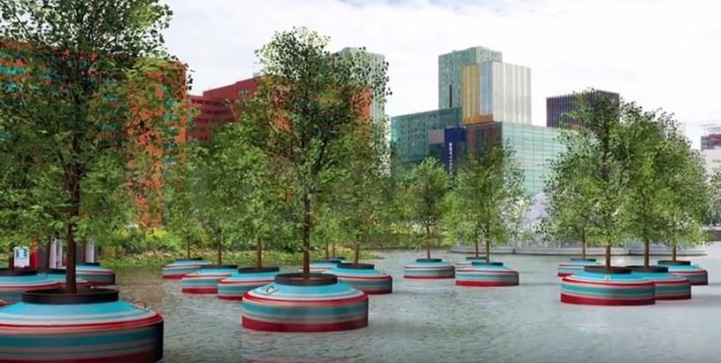 Pływający las ma być odpowiedzią na regularną wycinkę drzew w miastach /YouTube