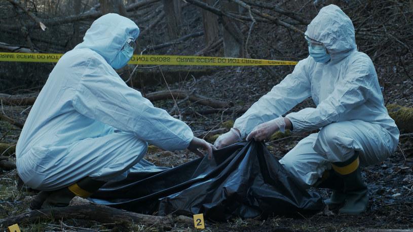 Po 32 latach rozwiązano sprawę morderstwa Stephanie Isaacson /123RF/PICSEL