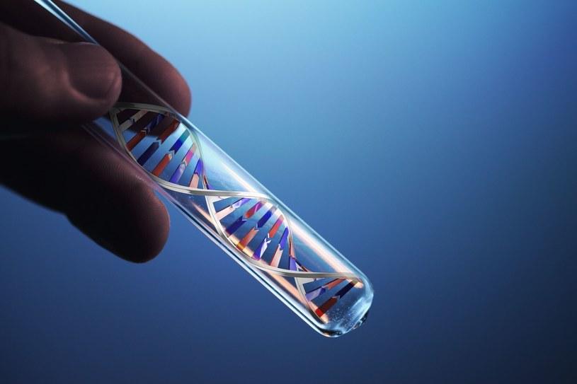 Po badaniach DNA prawda wyszła na jaw /123RF/PICSEL