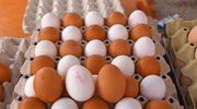 Po czym poznać dobre jajka?