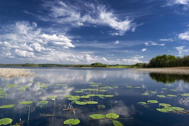 Po deszczach mniej sinic w jeziorach /123RF/PICSEL