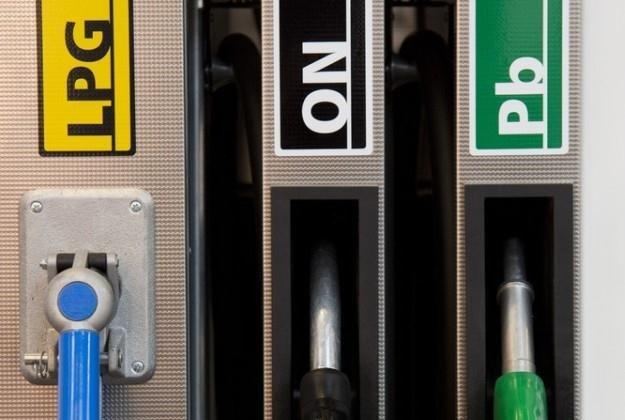 Po ile będziemy tankować w wakacje?  /Fot: Andrzej Hulimka /Reporter