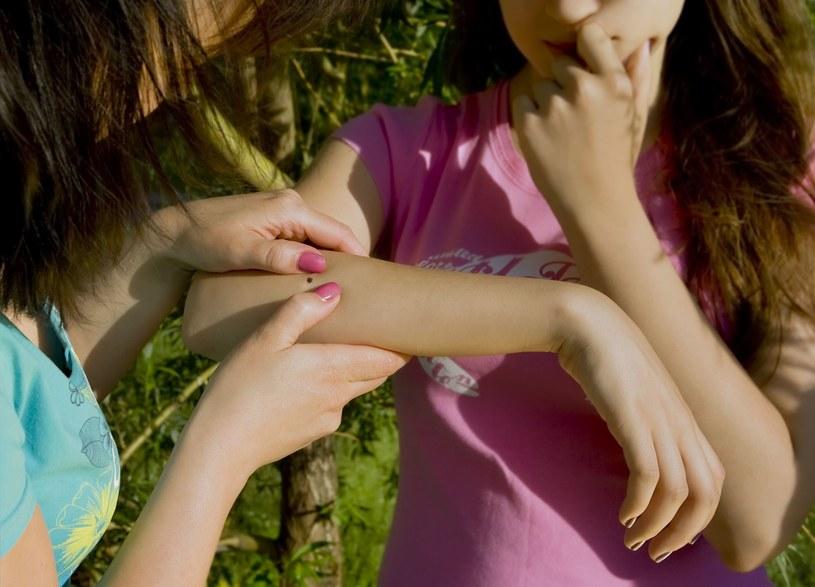 Po każdym spacerze powinniśmy obejrzeć ciało dziecka i sprawdzić, czy nie ma kleszcza /123RF/PICSEL