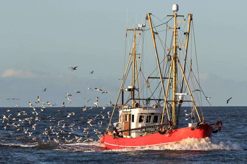 Po koniec XIX wieku kraken miał zaatakować rybacki kuter /123RF/PICSEL