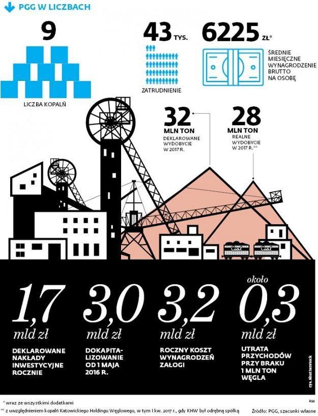 Po pięciu miesiącach 2017 r. zagraniczne zakupy surowca wzrosły o 600 tys. ton /Dziennik Gazeta Prawna