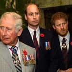 """""""Po prostu"""" Harry nazwał księcia Williama snobem! Prawda o relacjach na dworze królewskim!"""