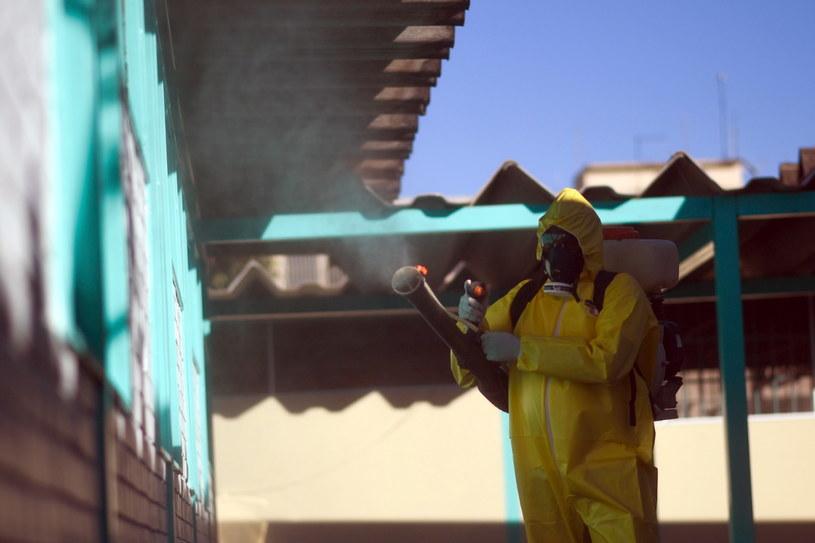 Po raz pierwszy od początku epidemii odnotowano w Brazylii spadek liczby zakażeń /Andre Borges /PAP/EPA