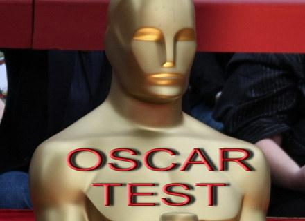 Po raz pierwszy w historii w czasie telewizyjnej relacji z Oscarów pojawią się reklamy filmów /AFP