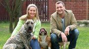 Po rozwodzie Rozenków psy pójdą do schroniska?