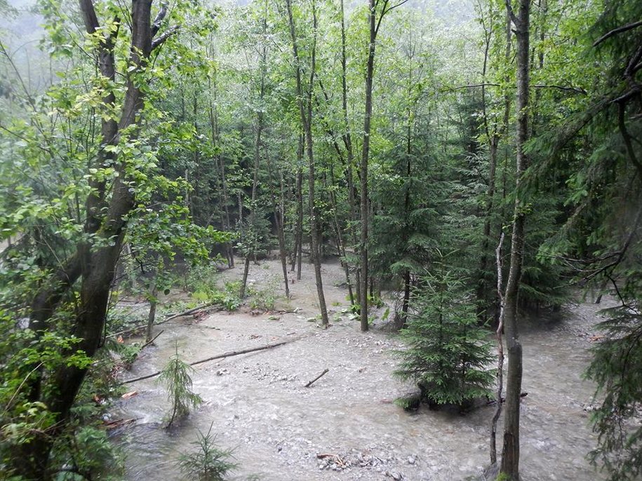 Po ulewach zamkniętych jest wiele szlaków w Tatrach /foto. TPN /