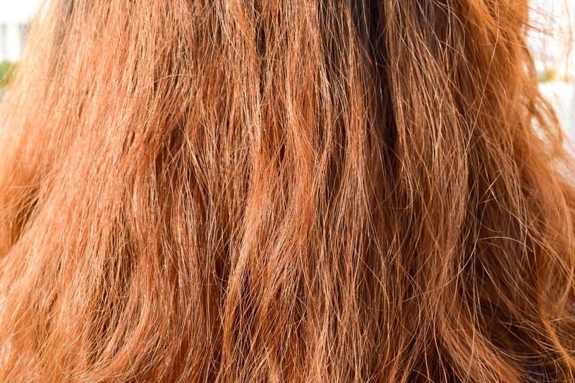Po wpływem wiatru i mrozu włosy stają się szorstkie i matowe, a ogrzewanie w mieszkaniu sprzyja ich przesuszeniu /123RF/PICSEL
