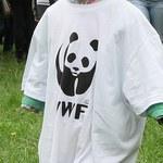 Pobicia, tortury i gwałty. WWF oskarżane o wspieranie oddziałów paramilitarnych