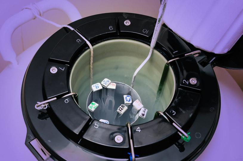 Pobrane od pacjentów gamety są przechowywane w ciekłym azocie w bankach komórek /123RF/PICSEL