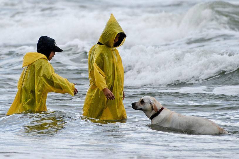 Pochmurny i deszczowy dzień na plaży w Dębkach / Łukasz Dejnarowicz  /Agencja FORUM