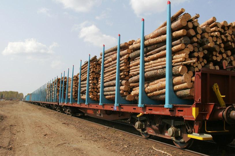 Pociąg będzie przewozić najróżniejsze towary, w tym drewno /Lehtikuva Oy /East News