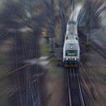 Pociągi czeskiego przewoźnika Leo Express wracają na trasę Praga-Kraków