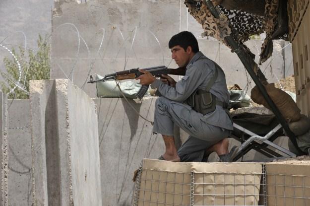 Poćwierkajmy zamiast strzelać /AFP