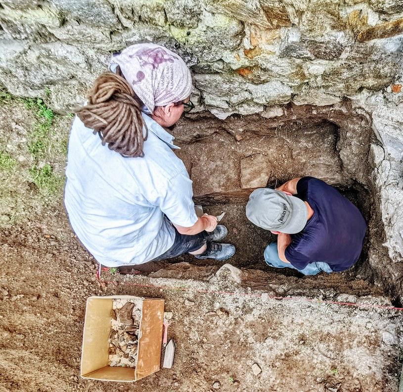 Początek prac na zamku wysokim, dziedziniec. Odsłonięta ława fundamentowa pozwala sądzić, że zamek był wśredniowieczu większą budowlą niż dotychczas sądzono. W wykopie Radek Biel i Łukasz Orlicki /Odkrywca