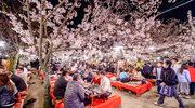 Początek wiosny – jak celebruje się go w innych krajach?