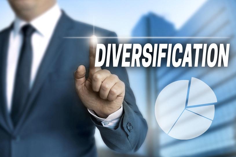 Początkujący inwestorzy powinni pamiętać o podstawowej zasadzie, czyli dywersyfikacji /123RF/PICSEL