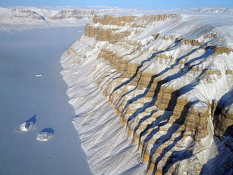 Pod grenlandzkim lodem znajdują się gigantyczne kaniony /AFP