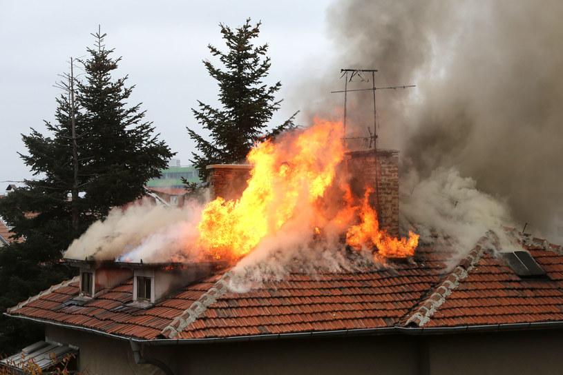 Pod koniec marca na terenie Polski odnotowano ok. 500. pożarów. /123RF/PICSEL